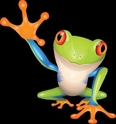 Urethane Coatings Frog - Natural Decking Oil